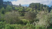 Finca in Murcia region