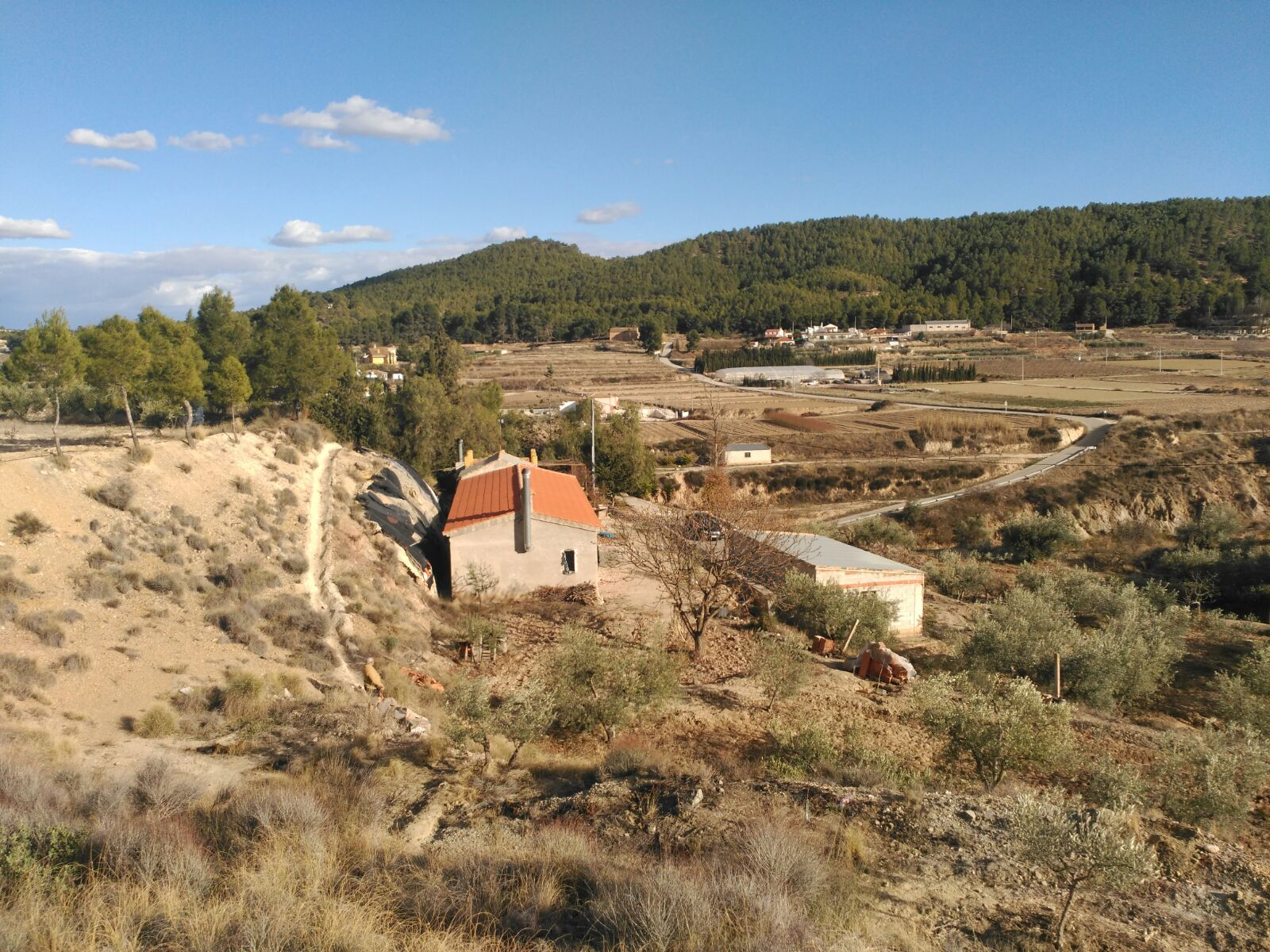 finca with 4 acres