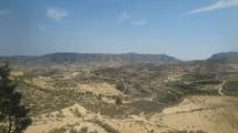 finca near Murcia City