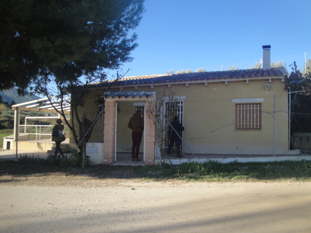 finca with 5.000 sqm
